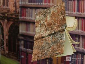 «Библионочь» в Нижнем Новгороде впервые пройдет в интернет-пространстве