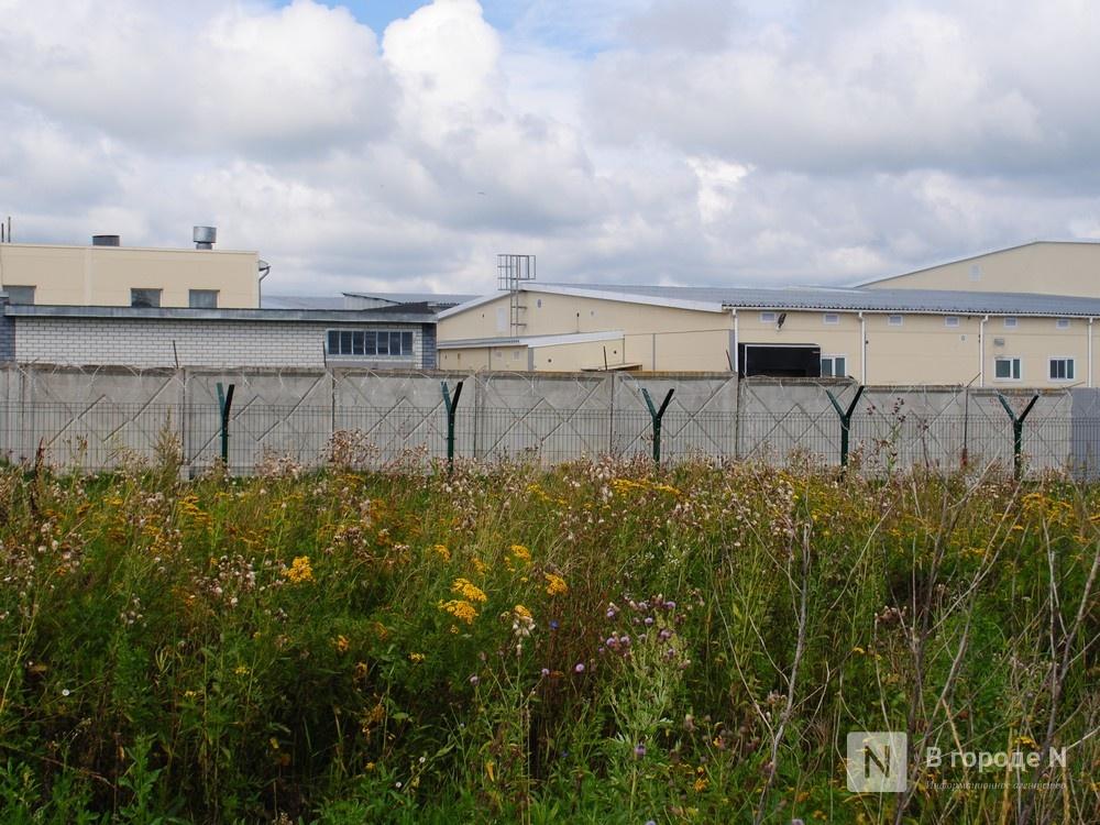 Долгая дорога из Долгово: птицефабрика «выставила» местных жителей на трассу - фото 7
