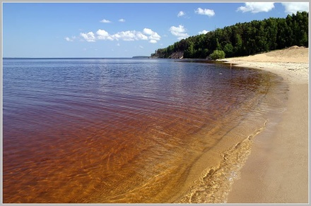 На берегу Горьковского моря снесут незаконные постройки