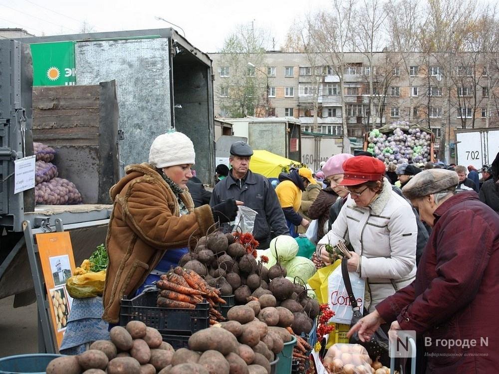 Нижегородские рынки массово проверят на соблюдение противокоронавирусных мер  - фото 1