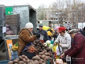 Нижегородские рынки массово проверят на соблюдение противокоронавирусных мер