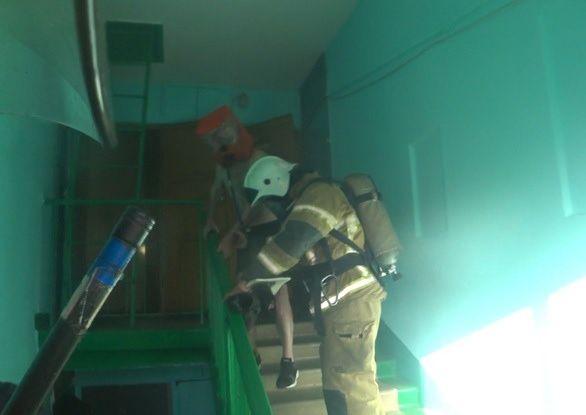 Ребенка и четверых взрослых спасли нижегородские пожарные из горящей пятиэтажки - фото 2