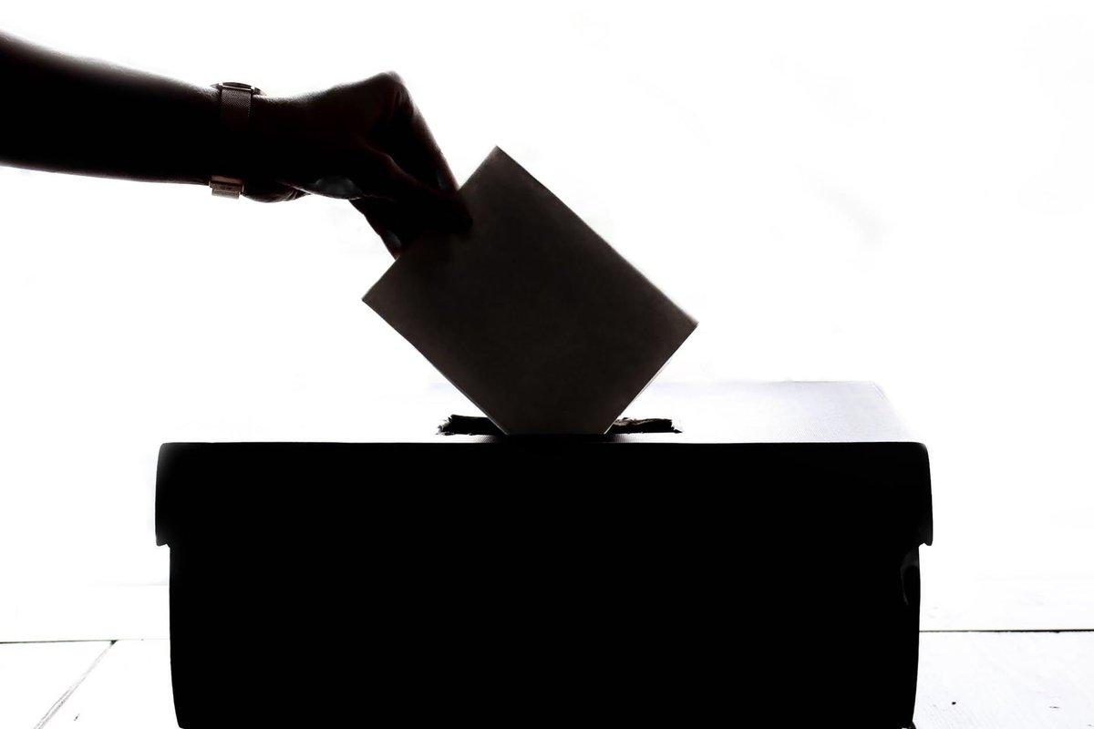 Коронавирус не помешает: за новую Конституцию россияне будут голосовать на дому