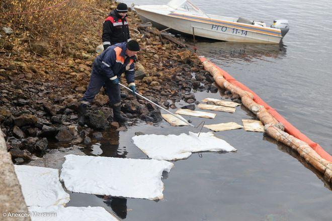 Более полутонны нефтепродуктов собрали с поверхности Волги в районе Бурнаковской низины - фото 4