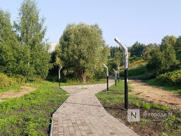 Благоустройство Лопатинского оврага планируется завершить в начале сентября - фото 19