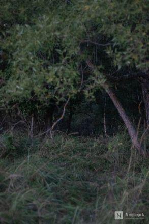 «Мы будем искать столько, сколько нужно»: россияне три дня искали Зарину Авгонову в Нижегородской области - фото 20