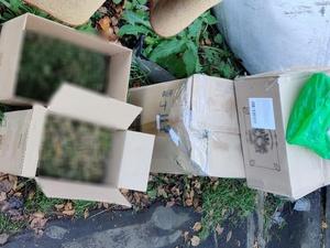 Семь килограммов конопли хранил для личных нужд житель Сергача
