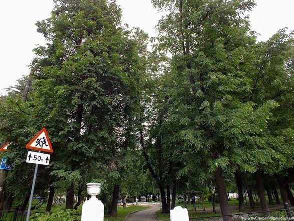 Нижегородцы недовольны шишками на ограде Ковалихинского сквера - фото 3