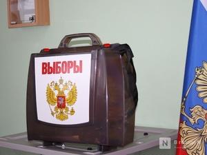 Нового мэра Нижнего Новгорода выберут не раньше осени