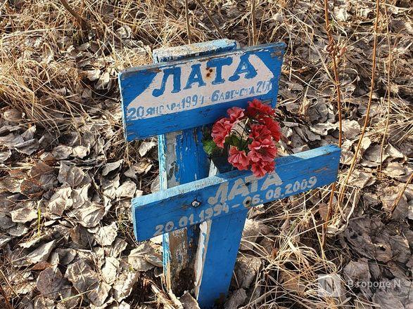 Православный крест над котом: где находится нижегородское кладбище домашних животных - фото 13