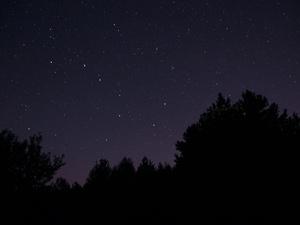 Нижегородцы увидят звездопад в ночь зимнего солнцестояния