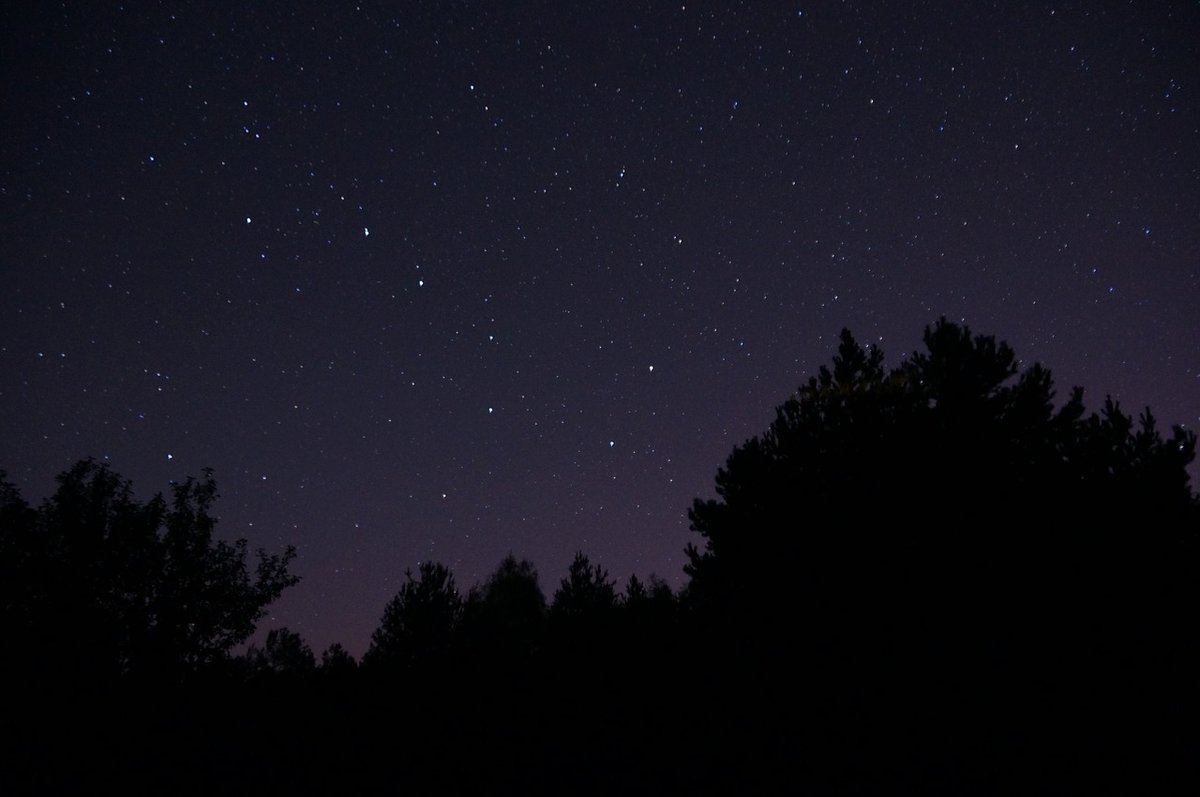 Нижегородцы увидят звездопад в ночь зимнего солнцестояния - фото 1