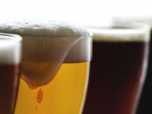 Эксперты определили марки лучшего пива в России