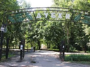Из-за срыва сроков благоустройства парка «Дубки» с подрядчиком могут расторгнуть контракт