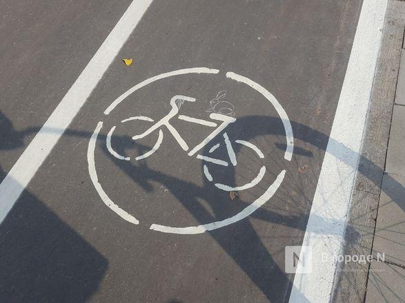 Велодорожка и сады на бетонном склоне: новая жизнь набережной Гребного канала - фото 3