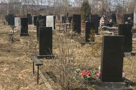 Оцифровку захоронений на кладбище «Нижегородское» завершат в 2019 году