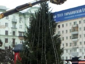 Новогодняя елка появилась на площади Горького
