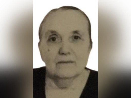 84-летняя женщина почти неделю назад пропала в лесу в Вознесенском районе - фото 1