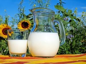 Антибиотики и растительный жир: кто из производителей молока обманывает россиян
